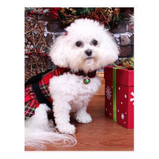 Christmas - Bichon Frise - Mia Postcard