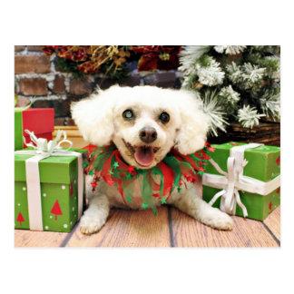 Christmas - Bichon Frise - Satchel Post Cards