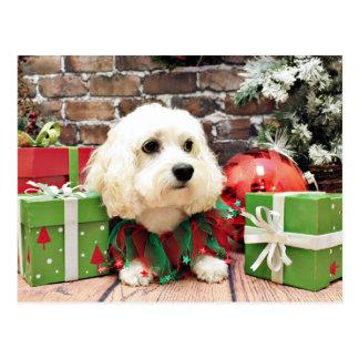 Christmas - Bichon Frise X - Bella Postcard