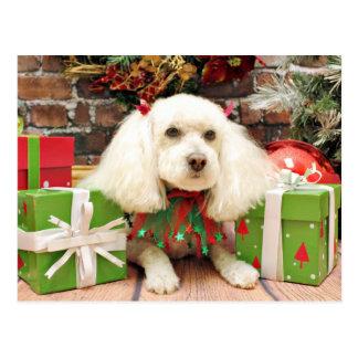 Christmas - Bichon Frise X - Katie Postcard