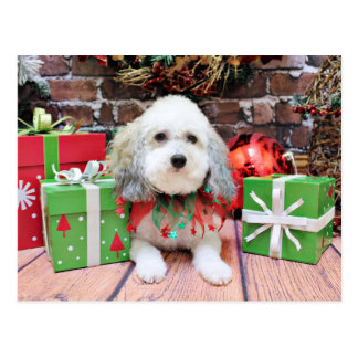 Christmas - Bichon Frise X - Macy Postcards