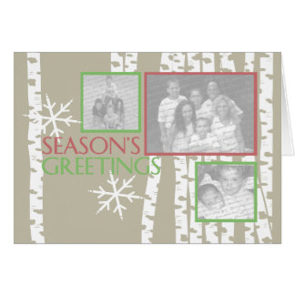 Christmas Birch Trees Photo Greeting Card