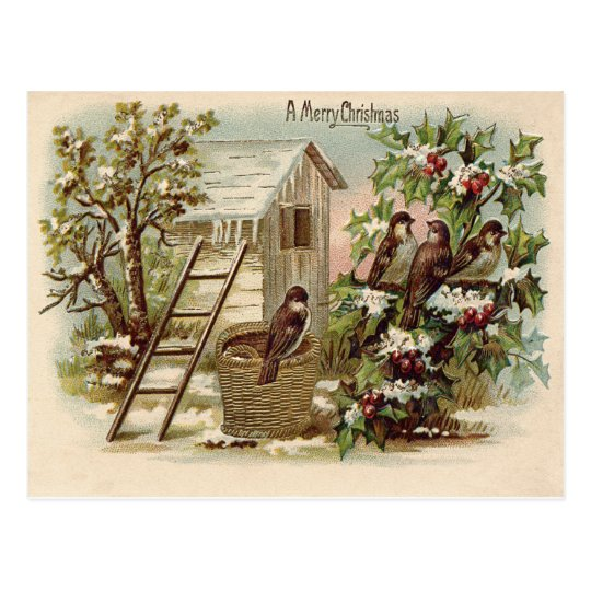 Christmas Bird Holly Snow Ladder Harvest Postcard