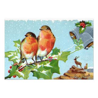 Christmas Bird Songbird Holly Snow Reindeer Bell Photographic Print