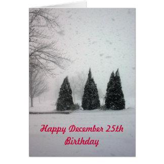 Christmas Birthday 6 - Gentle Snow Greeting Card