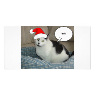 Christmas Black and White Kitten Customised Photo Card