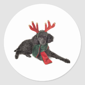 Christmas Black Toy Poodle Dog Dressed as Reindeer Round Sticker