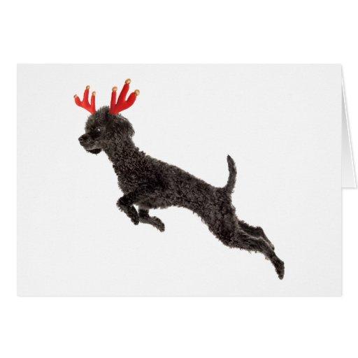 Christmas Black Toy Poodle Dog Reindeer Antlers Greeting Card