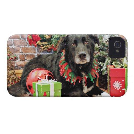 Christmas - Border Collie - Louie Blackberry Bold Cases