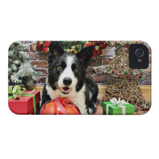 Christmas - Border Collie - Yaeger iPhone 4 Cases