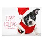 Christmas boston terrier card