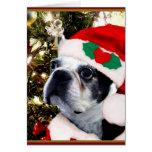 Christmas Boston terrier Cards