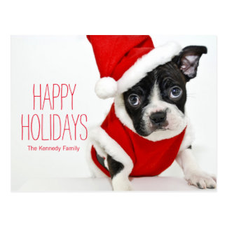 Christmas boston terrier postcard