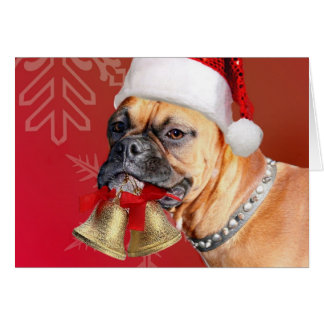 Christmas Neckties For Dogs Uk