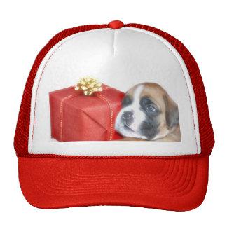 Christmas Boxer puppy cap