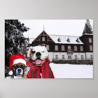 Christmas Boxers poster