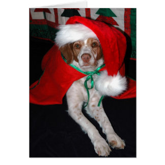 CHRISTMAS BRITTANY NOTE CARD