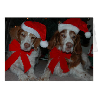 CHRISTMAS BRITTANYS GREETING CARD