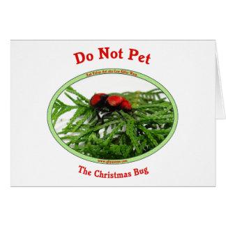 Christmas Bug Cow Killer Wasp Note Card