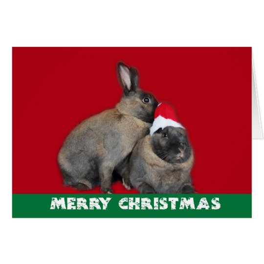 Christmas Bunny Rabbits Santa Hat Red Card