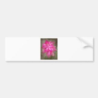 Christmas Cactus Bumper Sticker