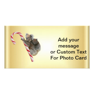 Christmas Candy Cane Koalas Custom Photo Card