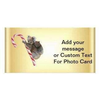 Christmas Candy Cane Koalas Photo Greeting Card