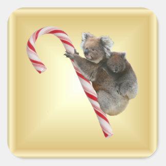 Christmas Candy Cane Koalas Square Sticker