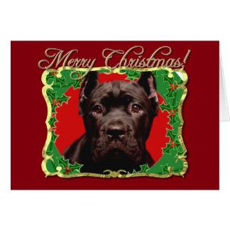 Christmas Cane Corso dog Card