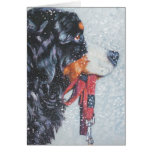 Christmas Card Bernese Mountain Dog