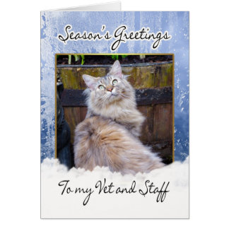 Christmas Card For Vet - Vet Christmas Card, Seaso