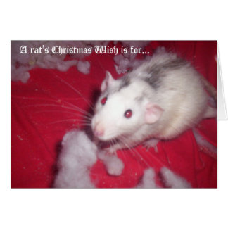 Christmas Card FOR your pet rats!