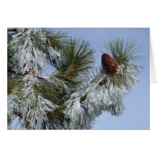 Christmas Card - Pinecone