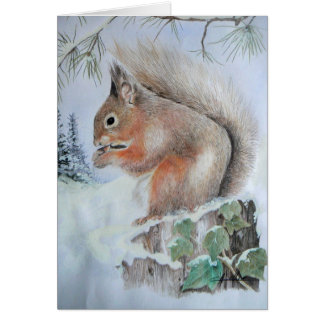 Christmas Card - Red Squirrel