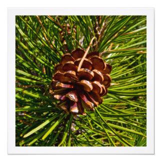 Christmas Card Square Panel Pine Cone Photo 13 Cm X 13 Cm Square Invitation Card