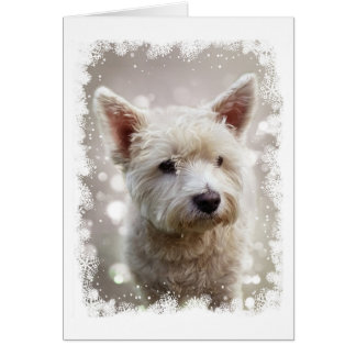 Christmas card with Westie