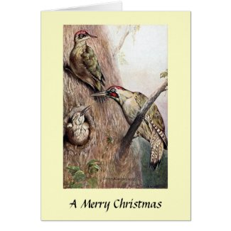 Christmas Card - Woodpeckers