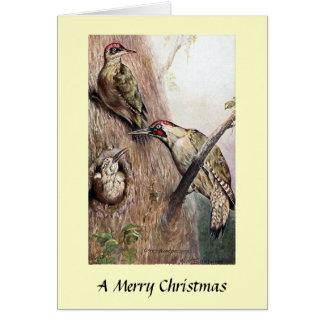 Christmas Card - Woodpeckers