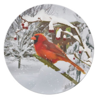 Christmas,  Cardinal Bird, Snow, Plate