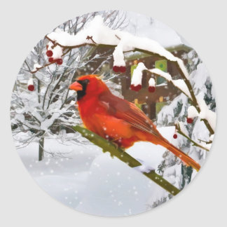 Christmas,  Cardinal Bird, Snow, Sticker