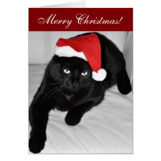Christmas cat 4 greeting card