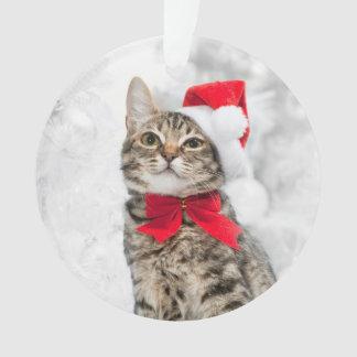 Christmas Cat At Red Santa's Hat Near Christmas