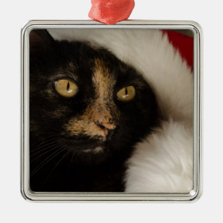 Christmas Cat Square Metal Christmas Ornament