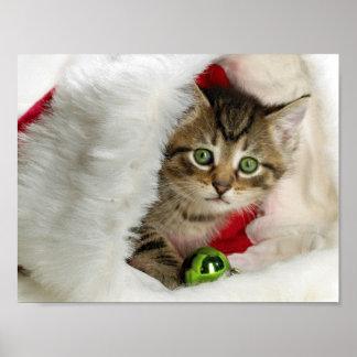 Christmas cat -kitten cat - cute cats poster