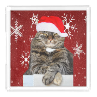 Christmas Cat Photo in Santa Hat Snowflake in Red Acrylic Tray