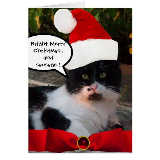 CHRISTMAS CAT WITH SANTA CLAUS HAT AND RED RIBBON GREETING CARD