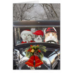 Christmas Cats in Car Greeting Card