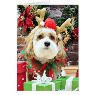 Christmas - Cavachon - Max Greeting Cards