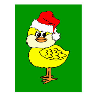 Christmas chick post cards