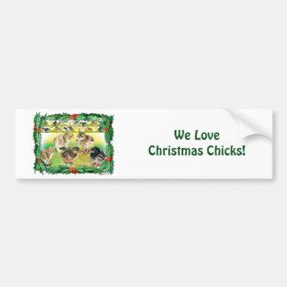 Christmas Chicks Car Bumper Sticker